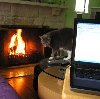 Day 2: Now THIS is what I call telecommuting, por Tina Lawson (vía Flickr)